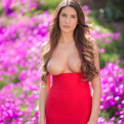August Ames in 'Reality Kings' No pants dance (Thumbnail 39)