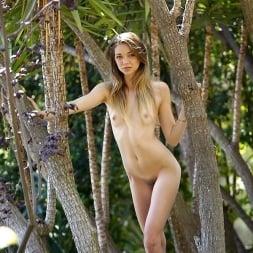 Mia Malkova in 'Reality Kings' Pussy feast (Thumbnail 144)